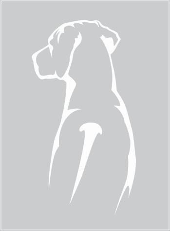 Rhodesian Ridgeback siluett