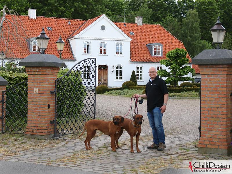 Koya, Argos & Tomas outside our hotell
