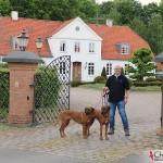 Tomas, Koya & Argos outside Louiselund in Haderslev