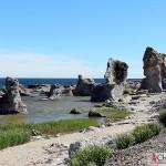 The limestones in Asunden