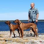 Argos, Dexter & Tomas at Asunden