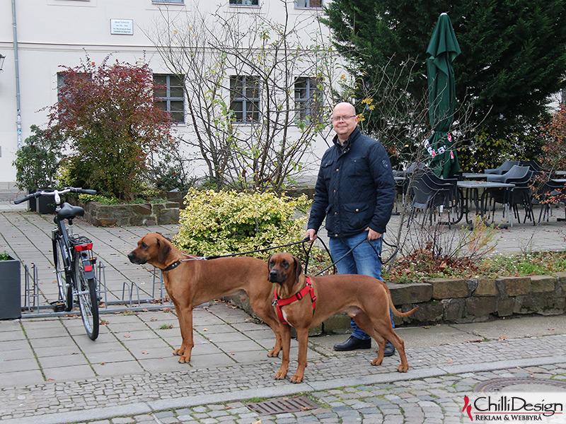 Dexter, Argos & Tomas in Wittenburg
