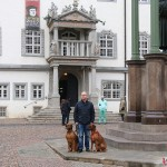 Dexter, Tomas & Argos at the Town Hall