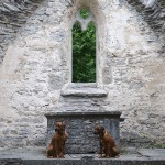 Argos & Dexter at the Ehlinghem churchruin
