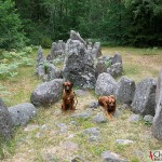 Argos & Dexter at the boat-shaped graves in Rannarve