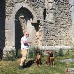 Tomas, Argos & Dexter at Bara Church Ruin