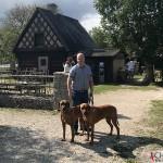 Tomas, Argos & Dexter at Bunge, Fårösund