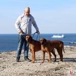 Tomas, Dexter & Argos at Södra hällarna