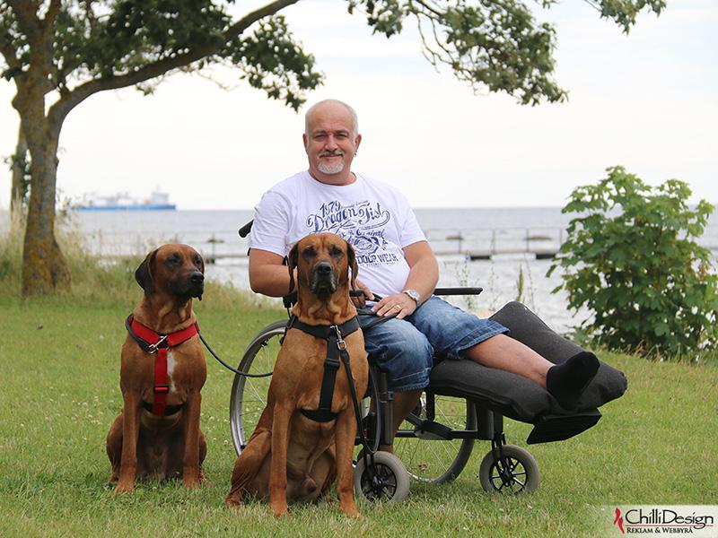 Argos, Jonny & Dexter in Norderstrand