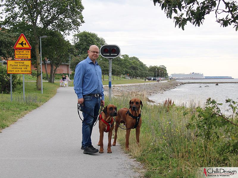Tomas, Argos & Dexter in Norderstrand