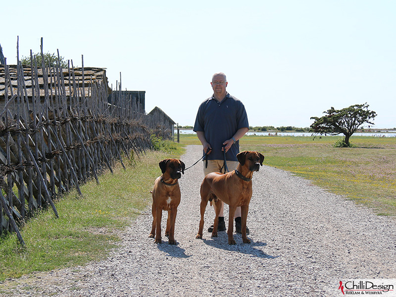 Argos, Tomas & Dexter in Kovik
