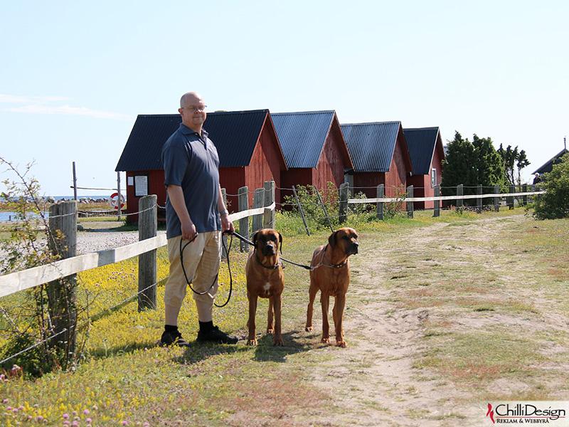 Tomas, Argos & Dexter in Kovik harbor