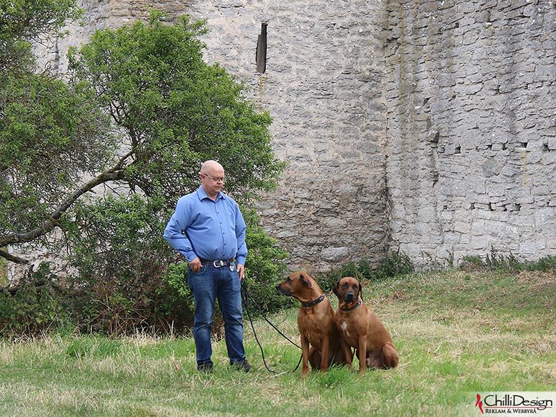 Tomas, Dexter & Argos in Visby