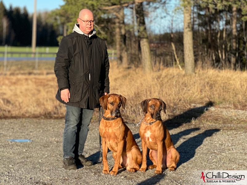 Tomas, Dexter & Argos